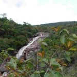 roraima-adventures-serra-do-tepequem (14)-compressed